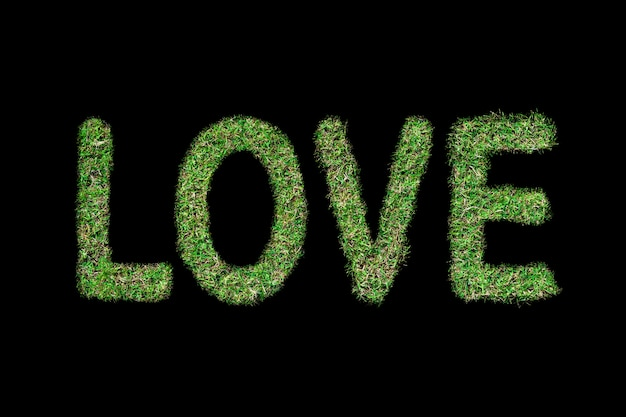 Love text with green grass growing on isolated on black.love concept