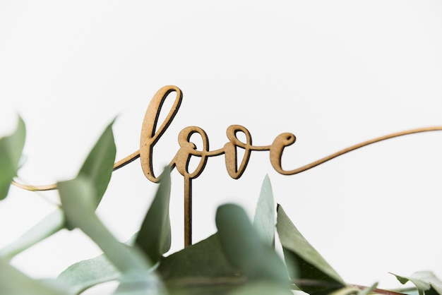 Love text with leaves on white background