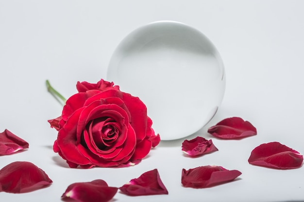 Love valentine's day background red roses with crystal ball.