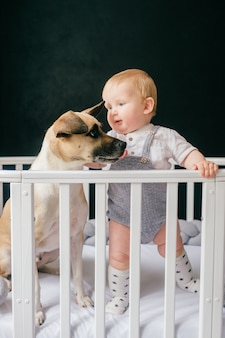 Lovely baby boy with dog standing together in crib
