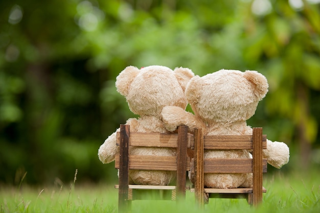 Lovely brown two teddy bear sit on wooden chair