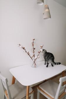 Милый кот позирует с цветами в помещении