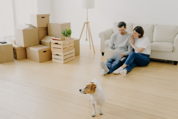 Lovely couple uses laptop together, buy furniture online for new apartment, sit on floor near sofa
