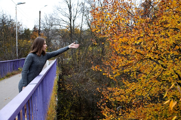 A lovely girl in a gray dress is standing on a bridge in the autumn or fall and reaching for a tree with worn leaves