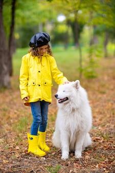 散歩で黄色いゴム長靴とレインコートを着た素敵な女の子は、秋の公園で美しい白いサモエド犬と遊んでいます。