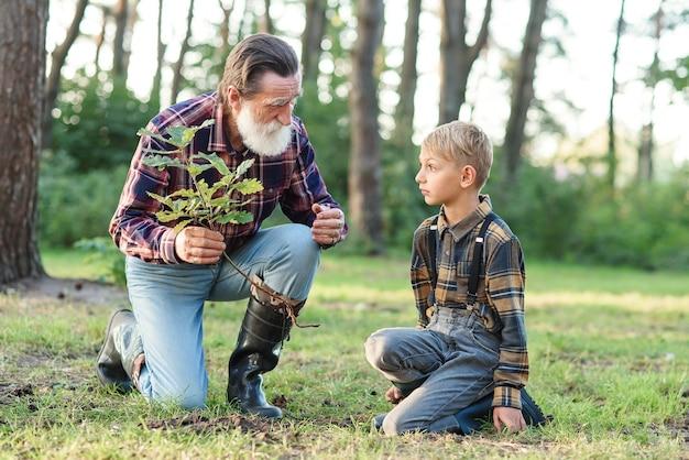素敵なおじいちゃんは孫に、森の中の他の木々の中でオークの苗木を地面に植えるように教えています。