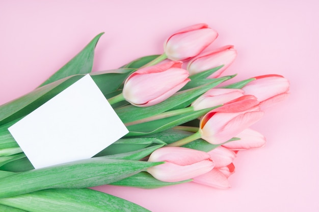 Lovely greeting card with flowers of tulips on pink background