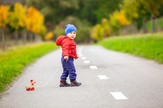 나무 장난감이나 외부의 끈에 오리를 가진 사랑스러운 아이