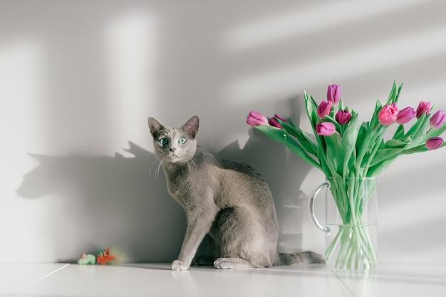 Прекрасный котенок позирует с цветами на сером фоне