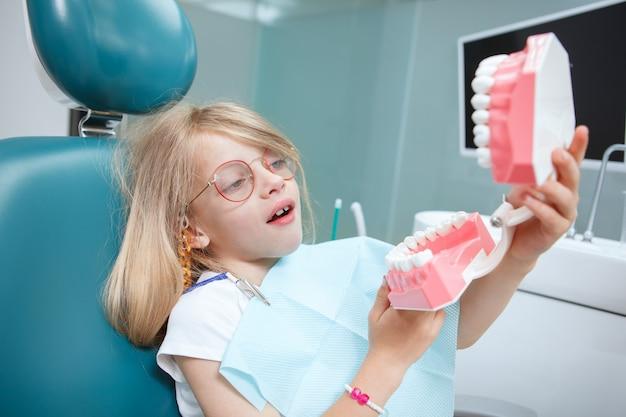 彼女が歯科医院で保持している顎のモデルを見ている素敵な女の子