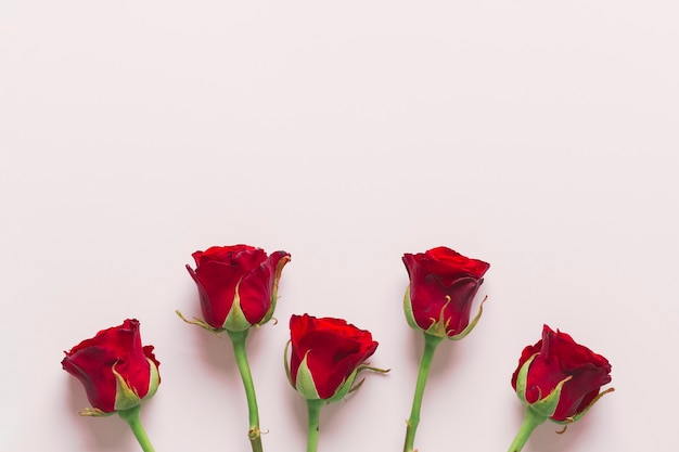 Lovely red roses composition