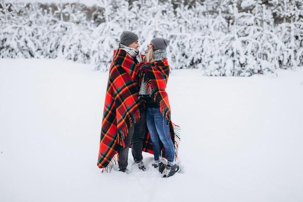 Влюбленные стоят укрытые одеялом на фоне заснеженного зимнего леса