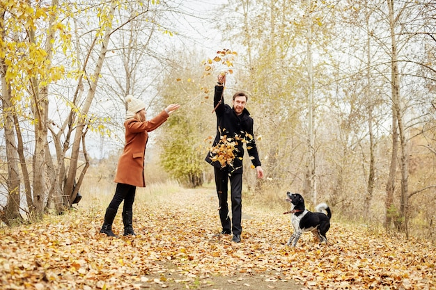 Loving couple walk through the autumn forest park with a spaniel dog. fun and joy playing with dog, pet's favorite. man and woman petting dog. family walks in nature