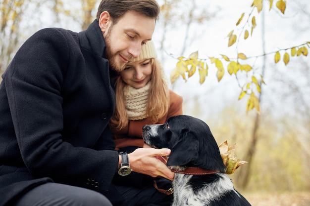 愛するカップルがスパニエル犬と一緒に秋の森の公園を散歩