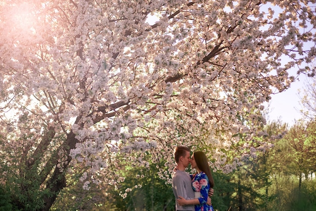 Loving guy and girl in a blooming apple orchard at sunset