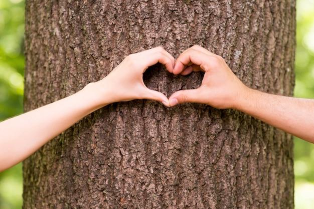 자연을 사랑합니다. 나무에 심장 모양을 몸짓으로 손을 클로즈업