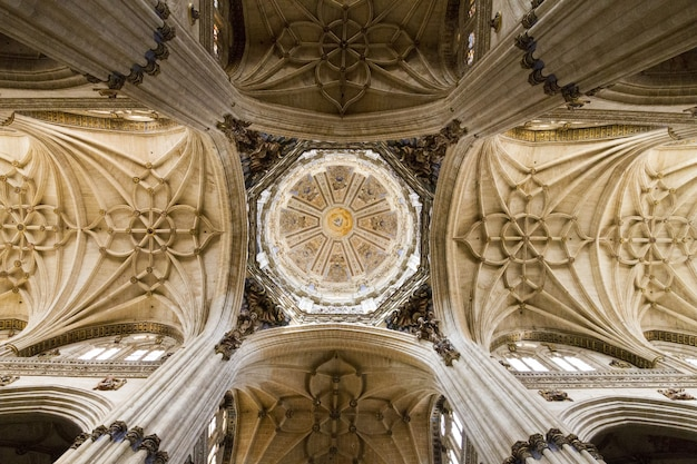 Low angle of the ceiling of the new cathedral in salamanca, spain