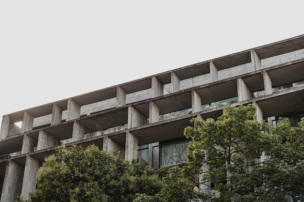 Low angle of concrete structure in the city with trees