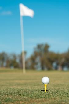 필드에 낮은 각도 골프 클럽