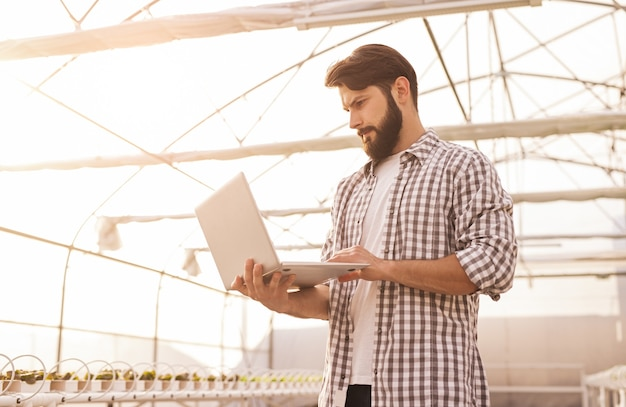 Low angle of male agronomist using laptop to control temperature and humidity inside glasshouse of hydroponic farm with growing plants