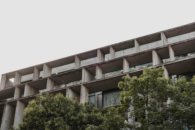 Низкий угол бетонной конструкции в городе с деревьями