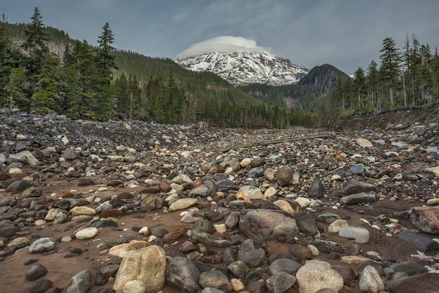 Низкий угол выстрела из высохшей реки, в окружении зеленых пейзажей на горе ренье, штат вашингтон