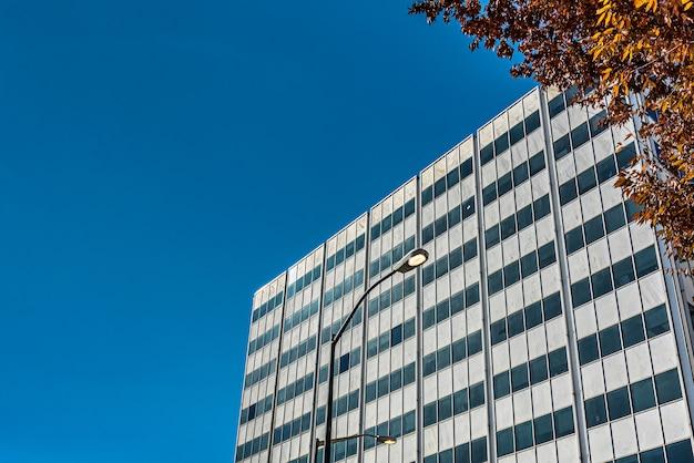 青い曇り空の下の木の近くの高いガラスの建物のローアングルショット
