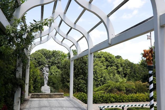 白い木製の庭のアーチのローアングルショット