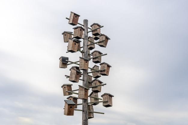 Снимок различных скворечников на деревянном шесте под низким углом