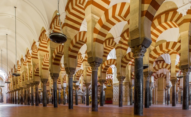 Low angle shot of patterned columns lined up inside a majestic cathedral in spain