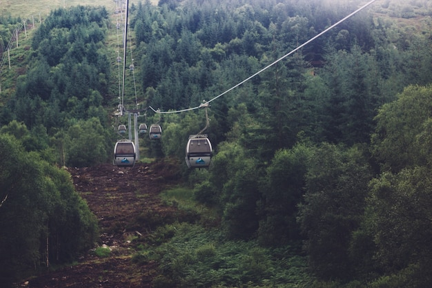 Low angle shot of a ropeway in the middle of a green mountainous scenery