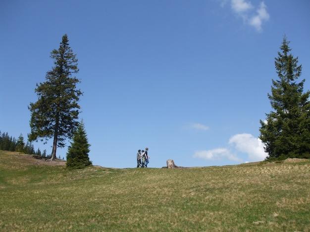 Inquadratura dal basso di tre maschi su un campo erboso con alberi ad alto fusto in una luce diurna
