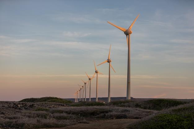 Colpo di angolo basso dei mulini a vento nel mezzo di un campo durante il tramonto nel bonaire, caraibico