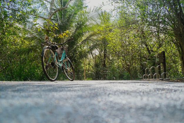 Low angle view of a bike parking on an empty road surrounded by lush green foliage in tropical forest in summer.