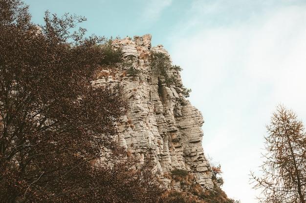 日中の青い空の下で木々に囲まれた高い岩山のローアングルビュー