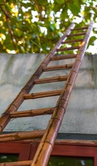 竹のはしごのローアングルビュー、空への道。