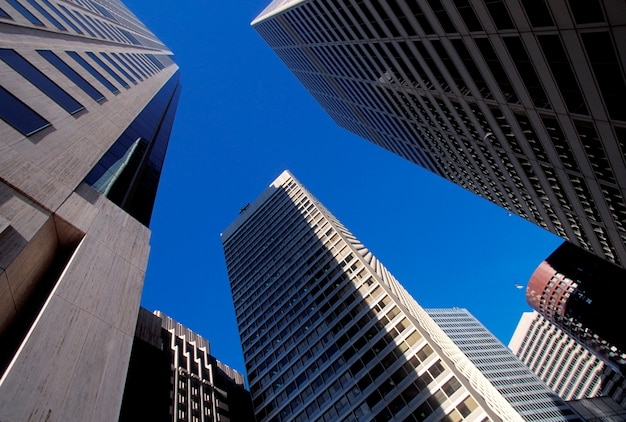 Low angle view of urban buildings in business district