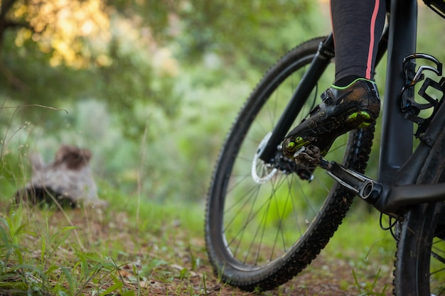 Low section of female mountain biker riding bicycle