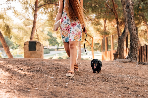 Low section view of a woman walking with her dog in park