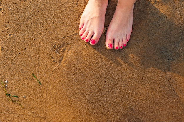 Low section view of a young woman legs standing on sand