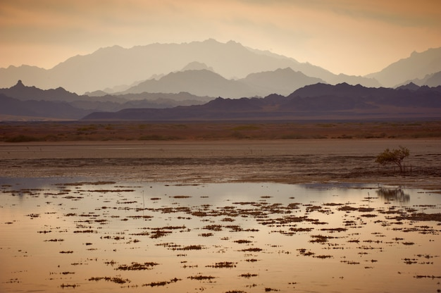 Low tide in the nabq national park.