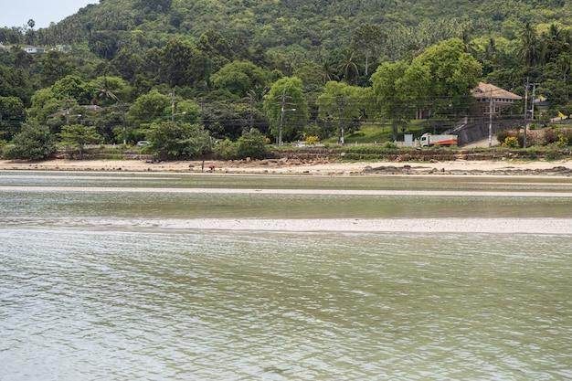 Отлив на побережье андаманского моря
