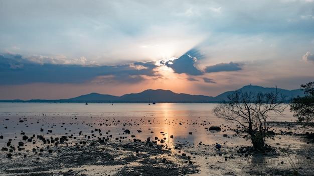 Low tide sea beach with stone and mangrove tree. sunbeam cloudy evening blue sky