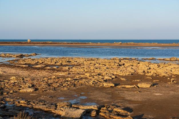 Low tide on the seaside