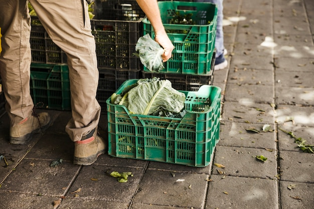 Lowsection of seller filling crates with fresh vegetables at supermarket