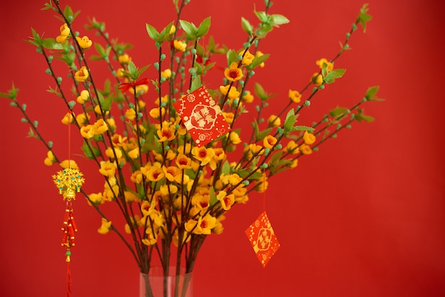 Lucky red envelopes hanging on blooming peach tree with best wishes for upcoming year on cards