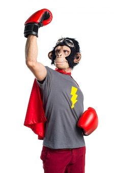 Lucky superhero monkey man with boxing gloves