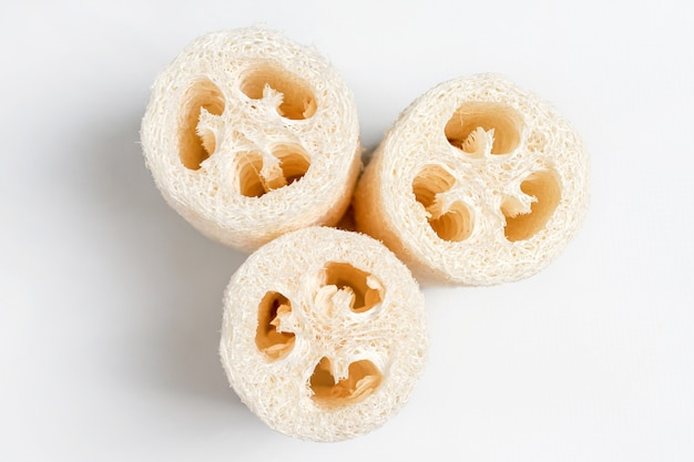 Luffa loofah. vegetable sponge extracted from the luffa plant on light background. eco friendly loofahs sponges