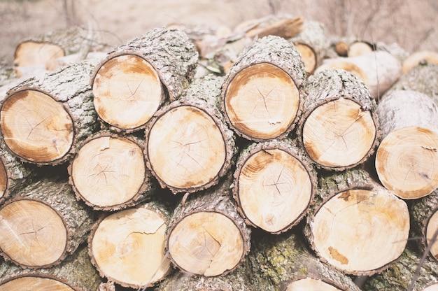 昼間に斧で切り刻まれた材木