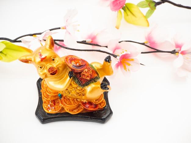 Lunar new year pig 2019